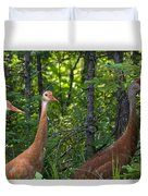Three On A Walk Duvet Cover