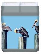 Three Pelicans Duvet Cover