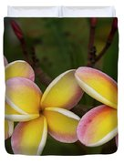 Three Pink And Yellow Plumeria Flowers - Hawaii Duvet Cover