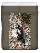 Three Toed Woodpecker  Duvet Cover