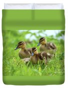 Three Wild Mallard Ducklings Duvet Cover