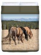 Three Wild Mustangs Duvet Cover