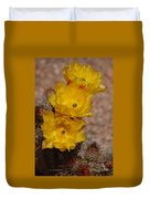 Three Yellow Cactus Flowers Duvet Cover