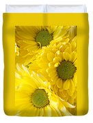 Three Yellow Daisies  Duvet Cover by Garry Gay