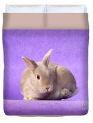Thump Gorgeous Dwarf Rabbit Stamps His Foot  Duvet Cover