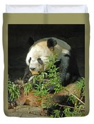 Tian Tian Hanging Out In Panda Man Cave Duvet Cover