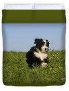 Tibetan Terrier Puppy Duvet Cover