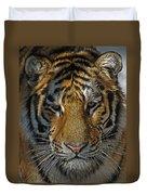 Tiger 5 Posterized Duvet Cover