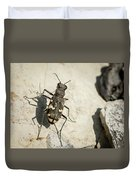 Tiger Beetle Looking For Prey On A Stone Duvet Cover