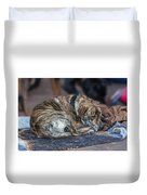 Tiger Dog And The Buskers Duvet Cover