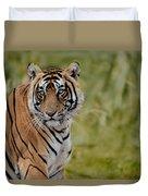 Tiger Look Duvet Cover