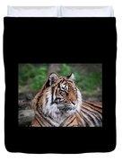 Sumatran Tigress Portrait  Duvet Cover