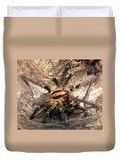 Tiger Spider  Duvet Cover