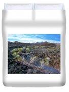 Tilt-shift Desert Wash Duvet Cover