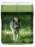 Timber Wolf Picture - Tw69 Duvet Cover