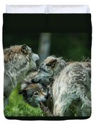 Timber Wolf Picture - Tw70 Duvet Cover