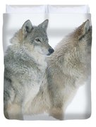 Timber Wolf Portrait Of Pair Sitting Duvet Cover
