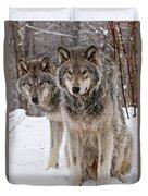 Timber Wolves In Winter Duvet Cover