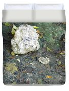 Tiny Fish In The Clear Water Duvet Cover