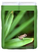 Tiny Tree Frog 01110 Duvet Cover