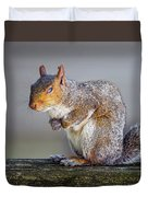 Tired Squirrel And Fly Duvet Cover