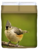 Titmouse Ready To Jump And Fly Duvet Cover