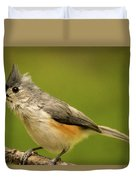 Titmouse With Bad Hairdo 2 Duvet Cover