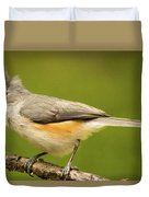 Titmouse With Bad Hairdo 3 Duvet Cover