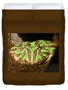 Toad With Green Stripes Duvet Cover