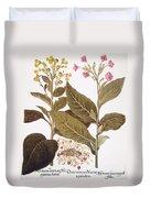 Tobacco Rustica, 1613 Duvet Cover