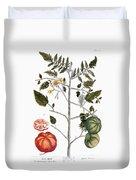 Tomato Plant, 1735 Duvet Cover