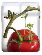 Tomato Seedlings Sprouting Duvet Cover