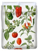 Tomatoes And Related Vegetables Duvet Cover by Elizabeth Rice