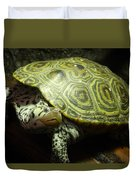 Turtle With A Tale To Tell Duvet Cover