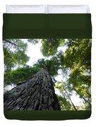 Towering California Redwood Trees Duvet Cover