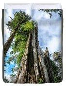 Towering Trees Duvet Cover
