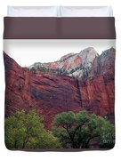 Towering Walls Zion Duvet Cover
