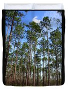 Trail Through The Pine Forest Duvet Cover
