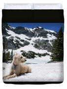 Traildog In Snow At Missouri Lakes Duvet Cover