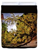 Tree Along Zion Riverside Walk Duvet Cover