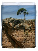 Tree And Window Duvet Cover