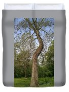 Tree At Botanical Gardens Duvet Cover