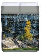 Tree At Picture Rock Cruise Duvet Cover