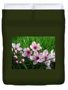 Tree Blossoms 4 Spring Flowers Art Prints Giclee Flower Blossoms Duvet Cover