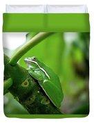 Tree Frog Duvet Cover
