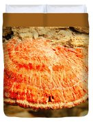 Tree Shell In Shades Of Pumpkin Duvet Cover
