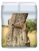 Tree Stump Duvet Cover