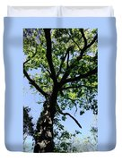 Tree Top Duvet Cover