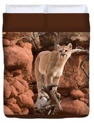 Treed Mountain Lion Duvet Cover
