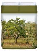 Trees 016 Duvet Cover